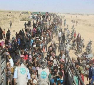 هكذا فشلت الفصائل الثورية والحركات الجهادية في سوريا