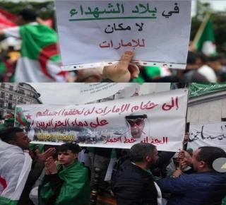 الخطط المظلمة للإماراتيين والسعوديين لإجهاض الحراك الثوري في الجزائر